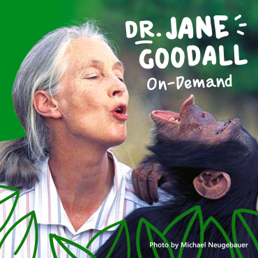 Learn how every individual's actions can make a big impact with Dr Jane Goodall